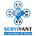 Web de ServiVant
